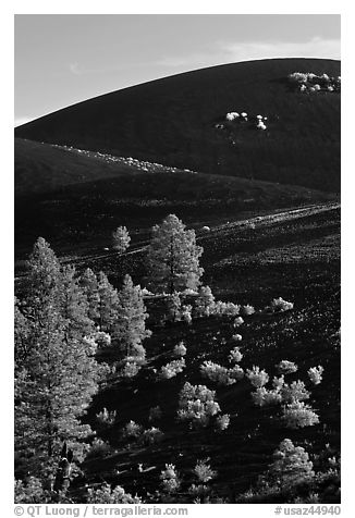 Cinder cone detail, Sunset Crater Volcano National Monument. Arizona, USA (black and white)