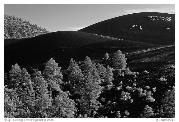 Volcanic landscape with cinder domes, Sunset Crater Volcano National Monument. Arizona, USA (black and white)