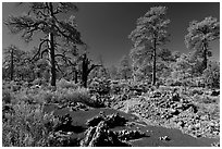 Kana-a lava flow, Coconino National Forest. Arizona, USA (black and white)