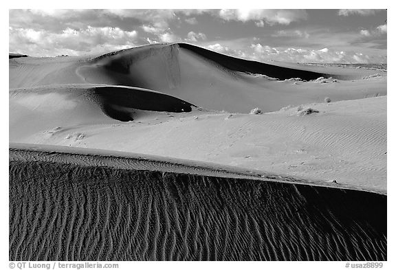 Pink Sand dunes, early morning. Canyon de Chelly  National Monument, Arizona, USA (black and white)