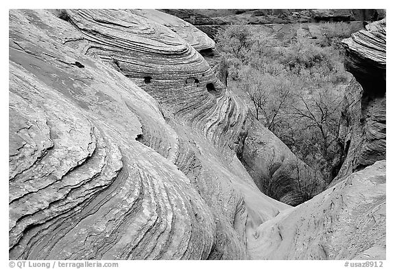 Sandstone Swirls. Canyon de Chelly  National Monument, Arizona, USA (black and white)