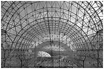 Glass enclosure seen from inside. Biosphere 2, Arizona, USA ( black and white)