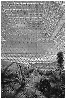 Ecosystem enclosed. Biosphere 2, Arizona, USA ( black and white)