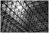 Metallic structure. Biosphere 2, Arizona, USA ( black and white)