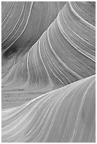Ondulating rock formation, the Wave. Coyote Buttes, Vermilion cliffs National Monument, Arizona, USA ( black and white)