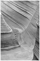 The Wave, side formation. Coyote Buttes, Vermilion cliffs National Monument, Arizona, USA ( black and white)
