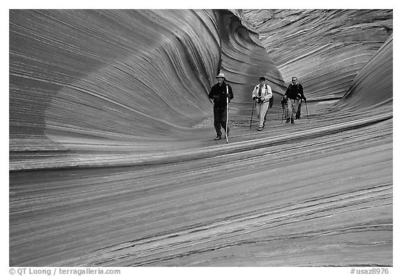Hikers walk out of the Wave. Coyote Buttes, Vermilion cliffs National Monument, Arizona, USA (black and white)