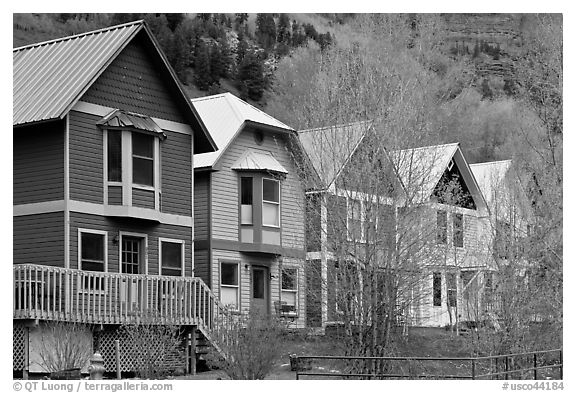 Houses with pastel colors and newly leafed trees. Telluride, Colorado, USA (black and white)