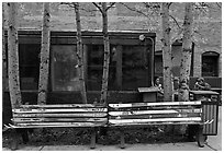 Public benches made of old skis. Telluride, Colorado, USA ( black and white)