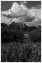 Chimney Rock landscape. Chimney Rock National Monument, Colorado, USA ( black and white)