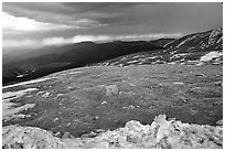Snow and tundra on Mt Evans. Colorado, USA ( black and white)