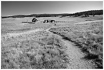 Trail and historic barns,  Florissant Fossil Beds National Monument. Colorado, USA (black and white)