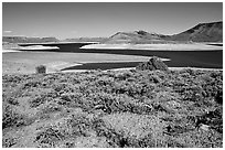 Cebolla Basin, Curecanti National Recreation Area. Colorado, USA (black and white)