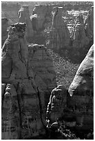 Spires. Colorado National Monument, Colorado, USA ( black and white)