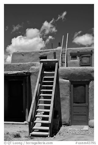 Ladder used to access upper floor of pueblo. Taos, New Mexico, USA (black and white)