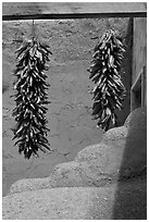 Strings of red pepper hanging from adobe walls. Taos, New Mexico, USA ( black and white)