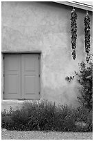 Ristras hanging from roof with blue shutters. Taos, New Mexico, USA ( black and white)