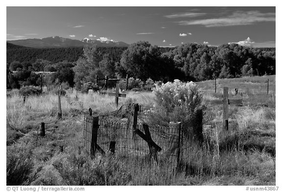 Woden crosses, cemetery, Picuris Pueblo. New Mexico, USA (black and white)