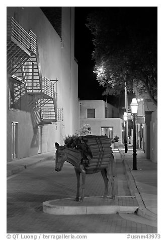 Street with sculpture by night. Santa Fe, New Mexico, USA (black and white)