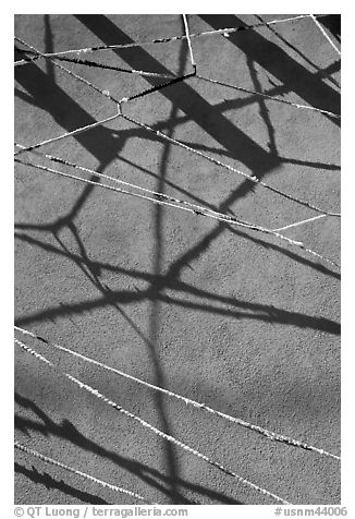 Shadows of vigas (wooden beams) and strings made of plastic bags. Santa Fe, New Mexico, USA (black and white)