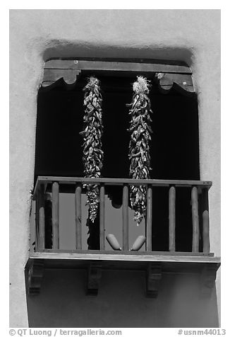 Ristras hanging from tower. Santa Fe, New Mexico, USA (black and white)