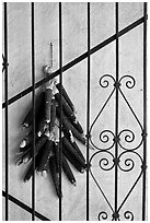 Dried black corn and ironwork. Santa Fe, New Mexico, USA ( black and white)