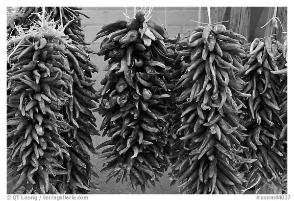 Ristras for sale. Santa Fe, New Mexico, USA