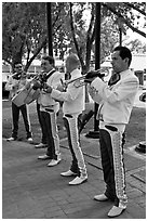 New Mexico mariachi. Albuquerque, New Mexico, USA (black and white)
