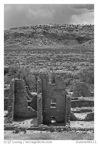 Ruined pueblo and cottonwoods trees. Chaco Culture National Historic Park, New Mexico, USA (black and white)