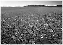 Peeling dried mud, sunrise, Black Rock Desert. Nevada, USA ( black and white)