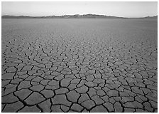 Cracked mud flat at sunrise, Black Rock Desert. Nevada, USA (black and white)
