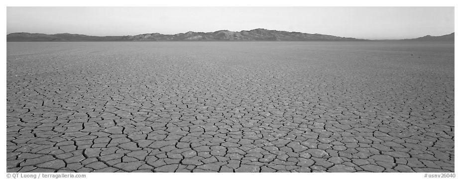 Desert landscape with cracked mud. Nevada, USA (black and white)