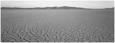 Desert landscape with cracked mud. Nevada, USA (Panoramic black and white)