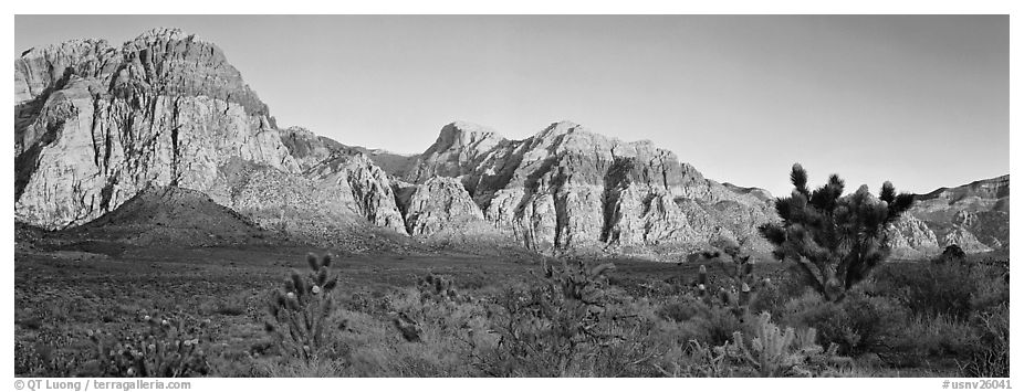 Desert cliffs. Red Rock Canyon, Nevada, USA (black and white)