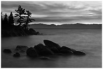 Rocks and trees, sunset, Sand Harbor, East Shore, Lake Tahoe, Nevada. USA ( black and white)
