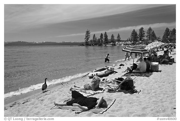 Families on sandy beach, Lake Tahoe-Nevada State Park, Nevada. USA (black and white)