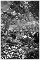 Botanical gardens inside Bellagio Hotel. Las Vegas, Nevada, USA (black and white)
