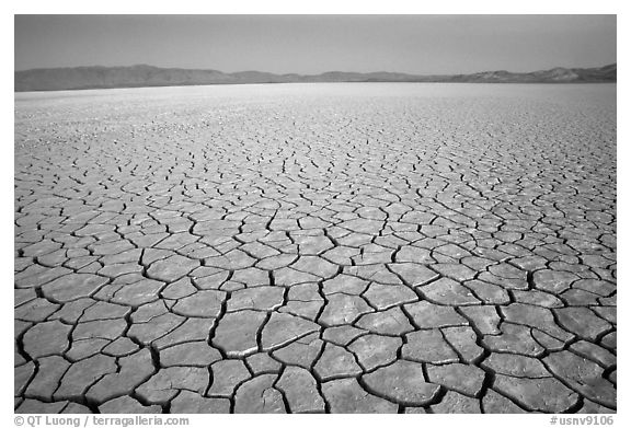 Playa with mud cracks, dawn, Black Rock Desert. Nevada, USA (black and white)