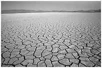 Playa with mud cracks, dawn, Black Rock Desert. Nevada, USA ( black and white)