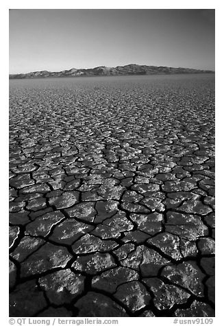 Dry Lakebed  with cracked dried mud, sunrise, Black Rock Desert. Nevada, USA (black and white)