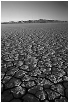 Dry Lakebed  with cracked dried mud, sunrise, Black Rock Desert. Nevada, USA ( black and white)