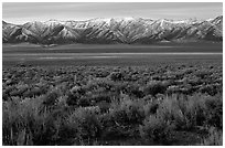 Sagebrush and mountain range. Nevada, USA ( black and white)
