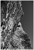Rock climbers. Red Rock Canyon, Nevada, USA ( black and white)