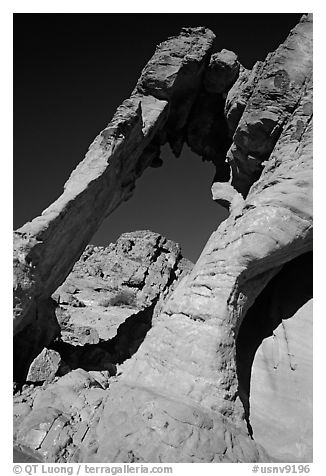 Rock with elephant shape, Valley of Fire State Park. Nevada, USA (black and white)