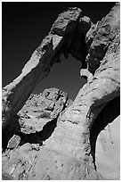 Rock with elephant shape, Valley of Fire State Park. Nevada, USA ( black and white)