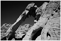Elephant-shaped rock, Valley of Fire State Park. Nevada, USA ( black and white)