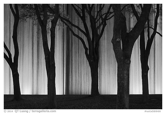 Trees and back Gerald D. Hines Waterwall at night. Houston, Texas, USA (black and white)