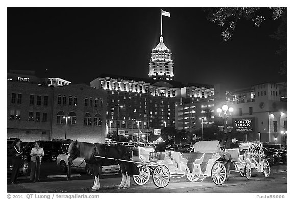 Horse carriages and Tower Life Building at night. San Antonio, Texas, USA (black and white)