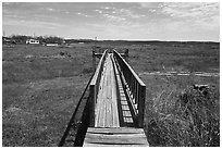 Deck over dried Buchanan Lake, Tow. Texas, USA ( black and white)