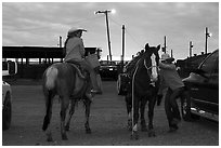 Women preparing to ride horses. Fort Worth, Texas, USA ( black and white)